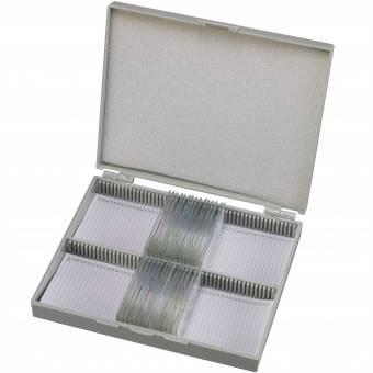 BRESSER Dauerpräparate Set mit 50 vorgefertigten und gefärbten Präparaten