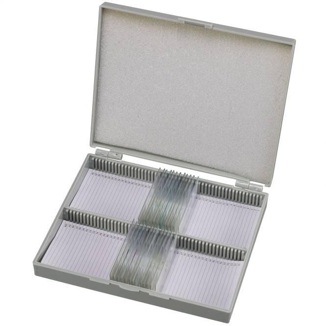 BRESSER Dauerpräparate Set mit 25 vorgefertigten und gefärbten Präparaten